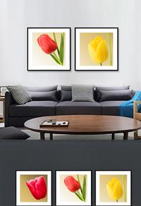 高清彩色花卉无框画设计下载