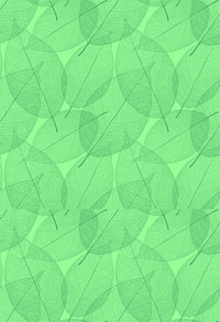 绿色叶子文化背景