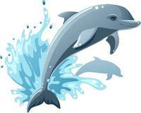 跃起的卡通海豚素材