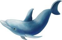 手绘海豚元素