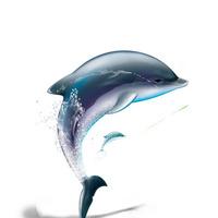 手绘海豚素材