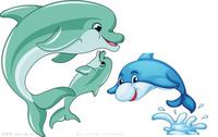 三只海豚设计元素