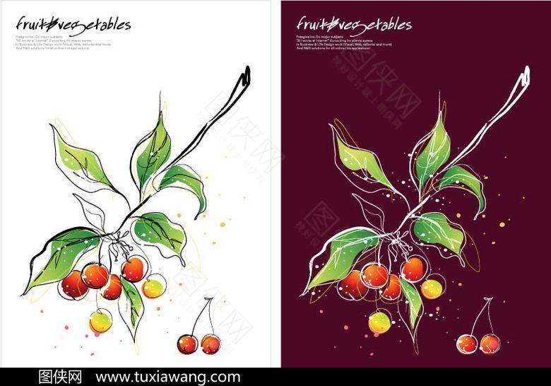 樱桃 水果 植物 果实 水果素材 手绘樱桃 设计元素 矢量素材 作品