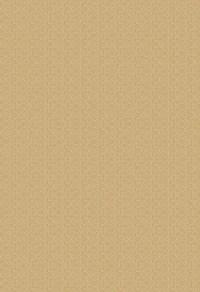 深黄宣纸纹路素材