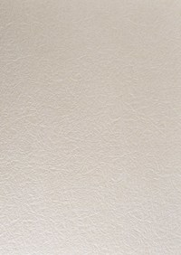 深色宣纸纹路素材