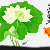 水墨白色莲花锦鲤无框画1