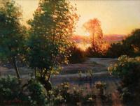夕阳下的树林无框画