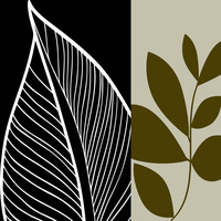 抽象树叶装饰画
