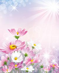 阳光下的花卉装家居装饰画