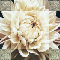 明亮白花装饰画1