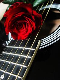 玫瑰吉他装饰画1