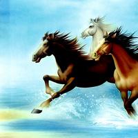手绘骏马装饰画