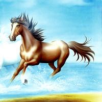 手绘骏马装饰画2