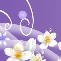 抽象白花装饰画1