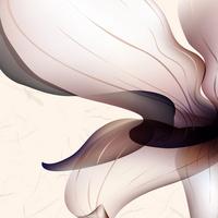 卡通精美抽象花朵装饰画