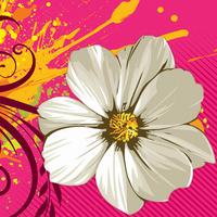 红背景白花装饰画1