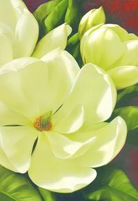 复古白色花朵装饰画7