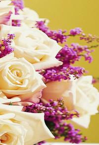 玫瑰花束装饰画3