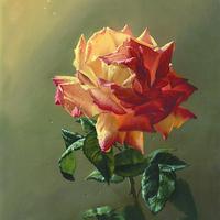 黄玫瑰装饰画