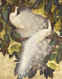 枝头白孔雀装饰画