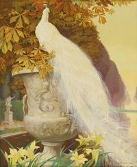 美丽白孔雀装饰画2