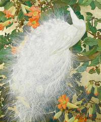 绿叶白孔雀装饰画