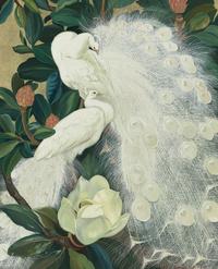 复古白色孔雀装饰画