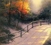 阳光下的山路无框画