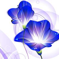 精美时尚卡通蓝色鲜花无框画