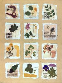 复古树叶标本装饰画