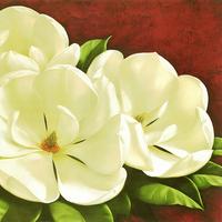 复古白色花朵装饰画5