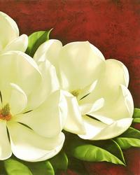 复古白色花朵装饰画1