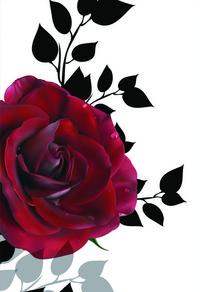 简约红玫瑰装饰画2