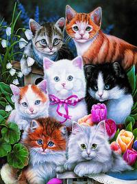 可爱小猫装饰画