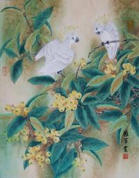 白色鹦鹉工笔装饰画