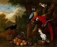 复古鹦鹉装饰画