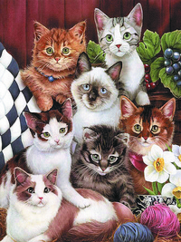 可爱小猫装饰画1