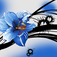 大气时尚精美蓝色卡通花朵无框画