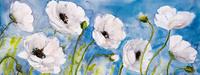 蓝天下的白花装饰画1