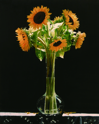 向日葵花瓶装饰画