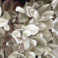 卡通白色花朵装饰画