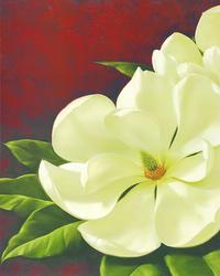 复古白色花朵装饰画2