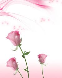 粉色玫瑰花客厅装饰画
