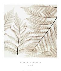 茶色树叶装饰画素材