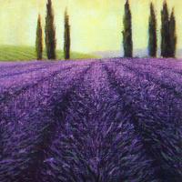 紫色薰衣草装饰画