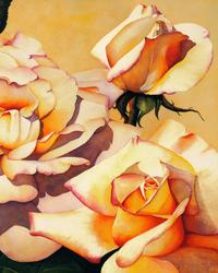 艳阳下的玫瑰花装饰画4